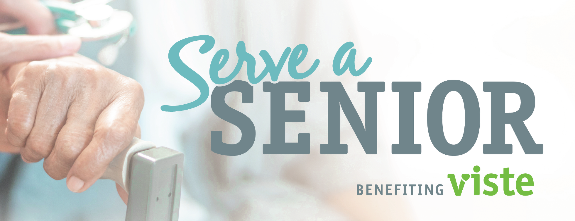 4th Annual Serve a Senior